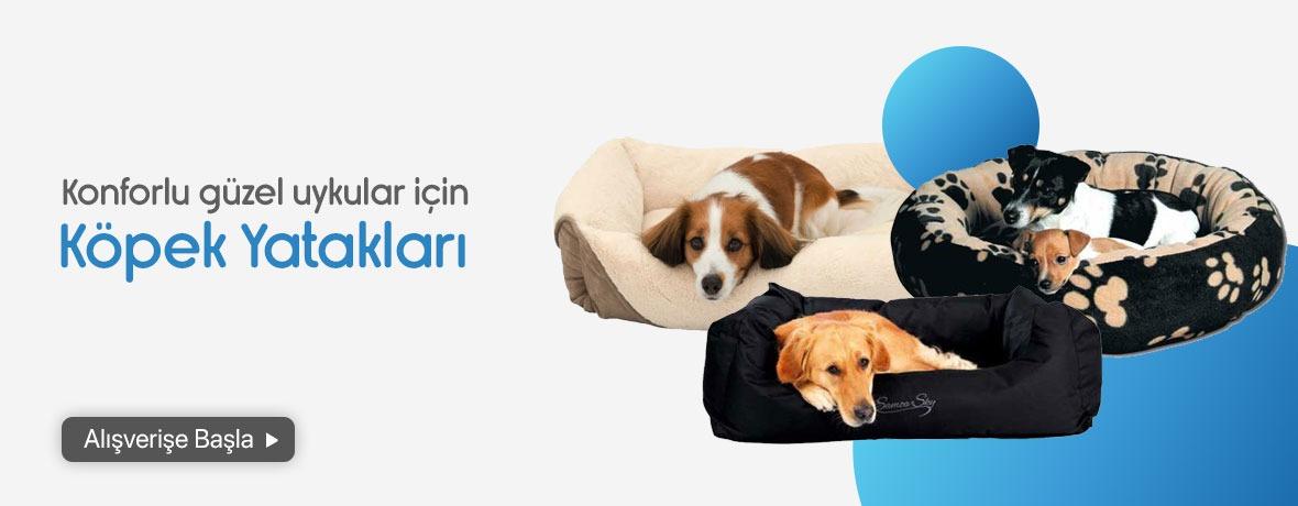 köpek yatakları